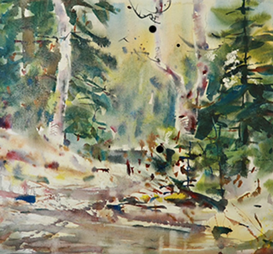 Watercolor painting birch trees and forest scene