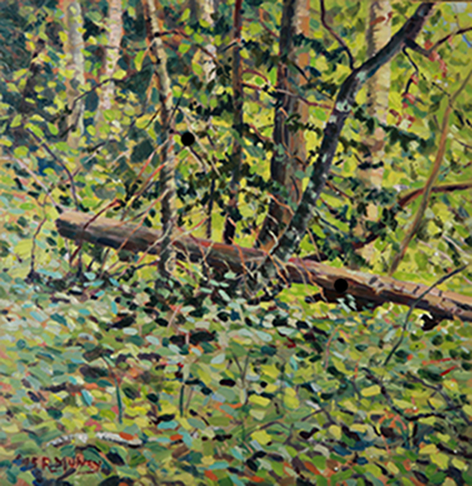 Acrylic painting done inside the forest  in May.