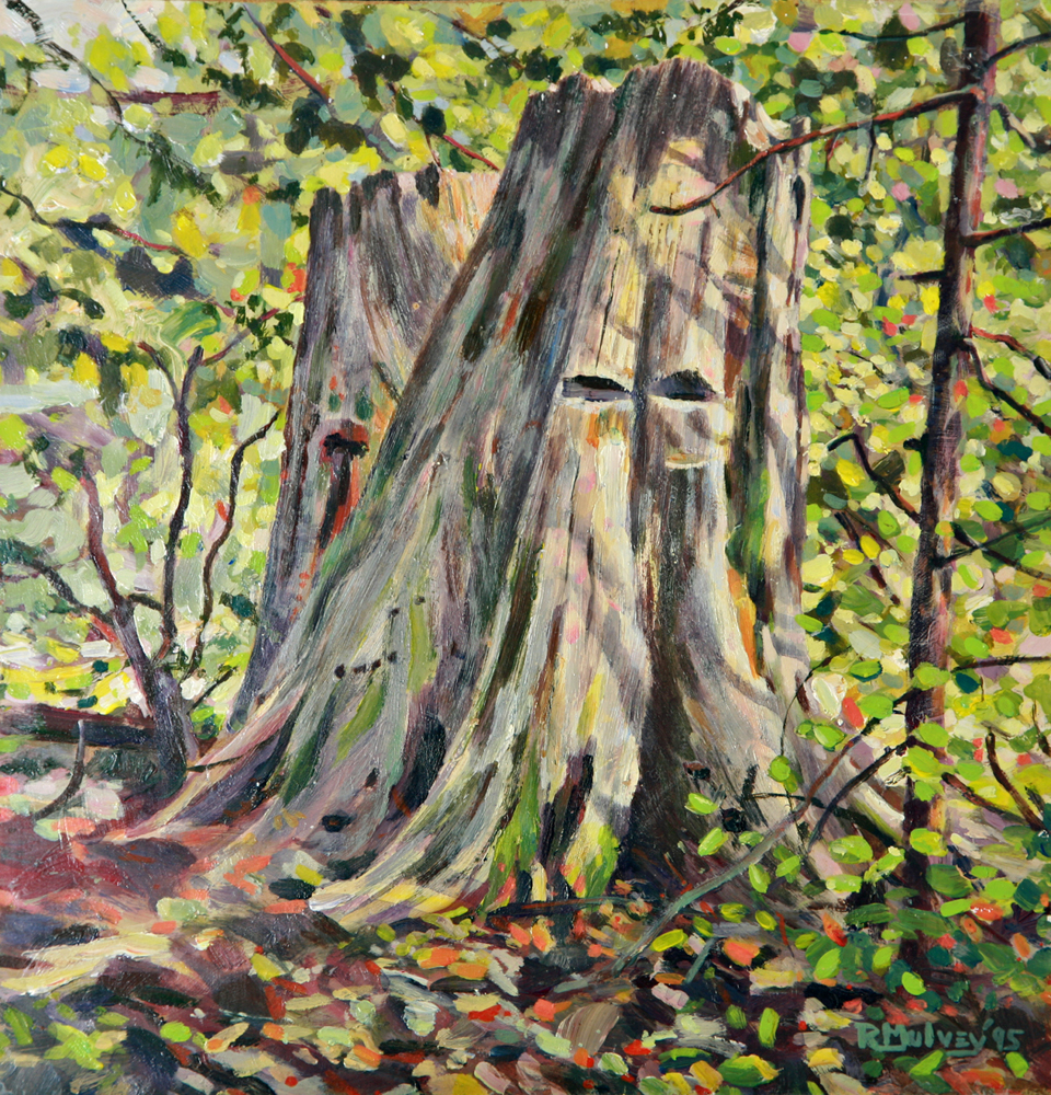 Painting of an old cedar tree for sale