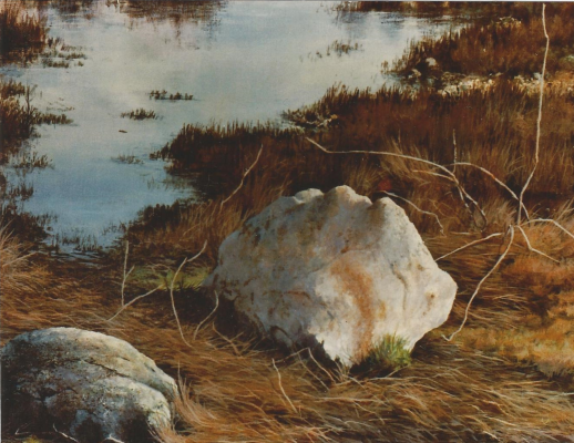 West coast picture of boulders in early spring, Crescent Beach